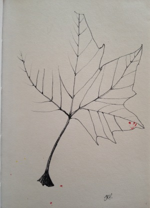 Leaf in black pen